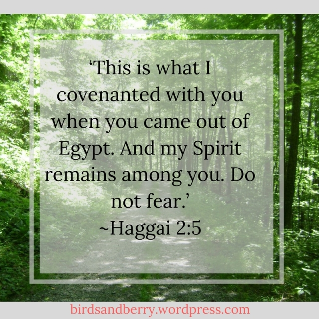 Haggai 2-5 - 'This is what I covenanted with you when you came out of Egypt. And my Spirit remains among you. Do not fear._